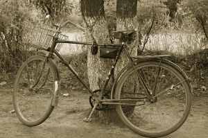 Велосипеды в Беларуси