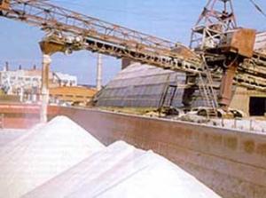 Индийская ассоциация фермеров планирует купить долю Беларуськалия
