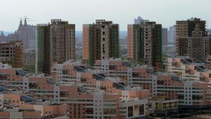 Строительство жилья под Ленинградом растет
