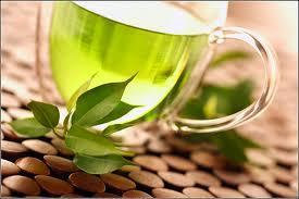 Зеленый чай защищает от рака