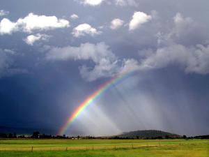 Какую погоду прогнозируют в Чернигове?