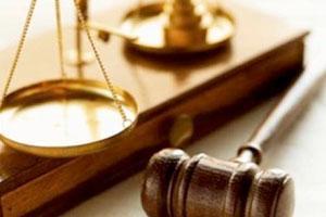 Вы пользовались услугами адвокатов?